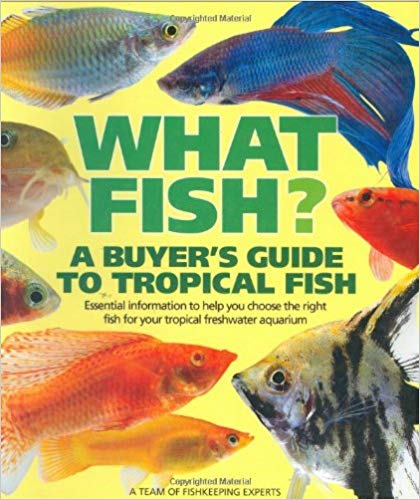 What Fish? Buyers Guide to Tropical Fish